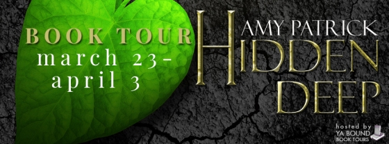 hidden deep tour banner